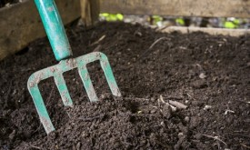 Fă-ţi singur îngrăşământul de grădină