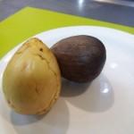 sambure-avocado-450x600