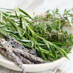 Ierburile aromatice – utilizări şi beneficii